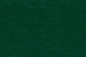 Vert Mousse RAL 6005